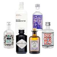 Gin Mini Tasting Set Vol. 1 - 6 x Original Gin minis